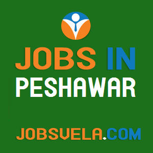 Jobs in Peshawar – Latest Govt. Private Today New Fresh 2020