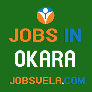 Jobs in Okara – Top Latest Govt. Private Today New OLX 2020