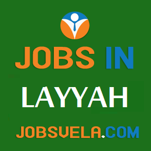 Jobs in Layyah - Top Latest Govt. Privat Today New OLX 2021